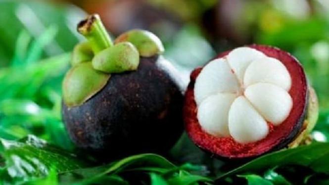 Beberapa Obat Herbal Buat Mengatasi Diabetes Tanpa Efek Samping